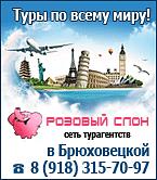 розовый-слон9