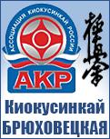 Киокусинкай