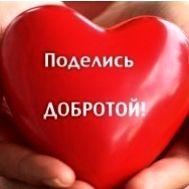 Донорская акция