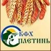 КФХ Плетинь Р. Б.