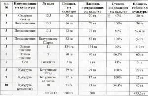 КФХ Плетинь Р.Б. после града 2018