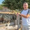 У фермера Михаила Радченко — одна из лучших овцеводческих ферм на Кубани. Фото Сергея Чамагуа