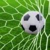 Футбол Брюховецкая