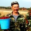 Атааман-фермер